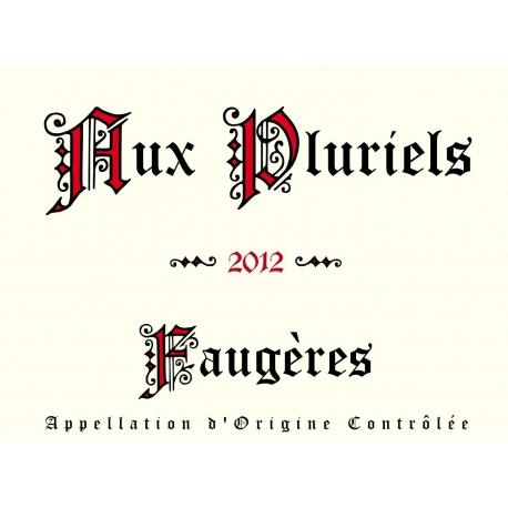 Aux Pluriels 2012